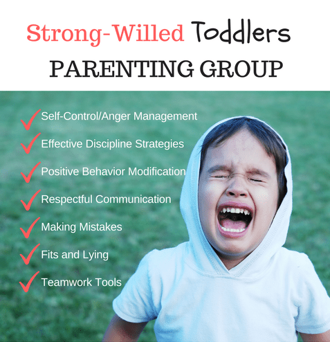 strong-willed-toddlers-parenting-group-1-e1529118966513.png